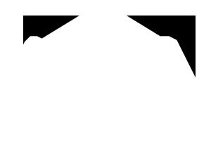 logo_NAIFA_white_300w.png