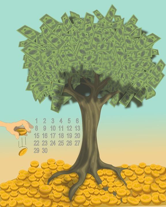 manage wealth